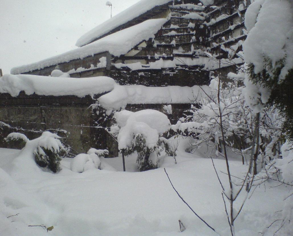 snow  برف دررشت
