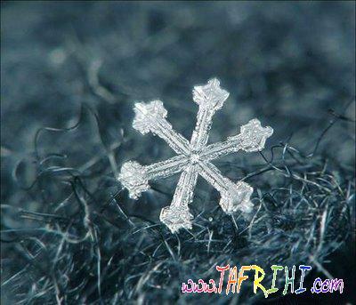 كاردستي زمستان با يك قطره آب يا شبنم در دل طبيعت